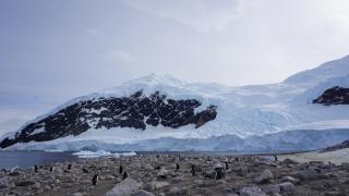 Antarktis Skitourenreise 2016