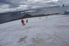 Antarktische Skiabfahrt (Thomas Andreas Beck)