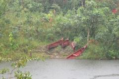 Regenwald am Ursprung des Amazonas (Foto: Sabine Holzer)