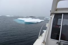 Bootsfahrt zwischen Eisschollen (Foto: Andreas Nothdurfter)