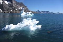 Eisschollen treiben im Meer (Foto: Andreas Nothdurfter)