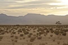 Wüstenlandschaft in Jordanien (Foto: Daniel Kopp)