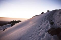 Mt. Kenya 2012 Landschaft mit Schnee (Foto: Andreas Scharnagl)