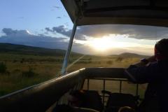 Sonnenuntergang in der Serengetis (Foto: Sabine Holzer)